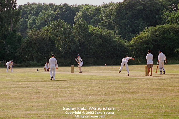 cricket-at-sedley-field-wymondham-leicestershire-2003-copyright-j-j-young.jpg